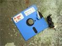 I floppy disk, croce e delizia degli archivisti digitali
