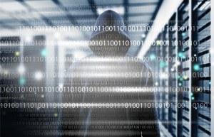 La sottrazione e cancellazione di file informatici archiviati su dispositivi aziendali si configura come appropriazione indebita o furto