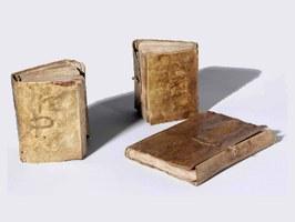 Note, formule e disegni: online i taccuini di Leonardo