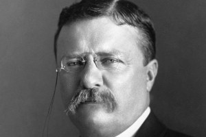 Online i Theodore Roosevelt Papers